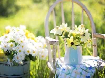 pflegeleichter garten für senioren, Garten ideen gestaltung